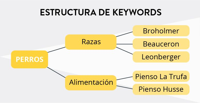 estudio-keywords-seo