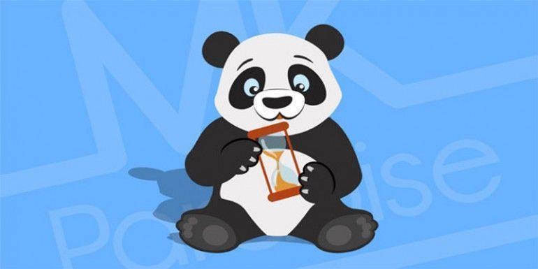 normas-google-panda