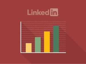 Cómo exprimir la analítica en Linkedin