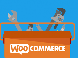 6 formas diferentes de usar Woocommerce para tu negocio